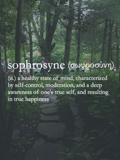 definition of the word sophrosyne over a picture of a forest